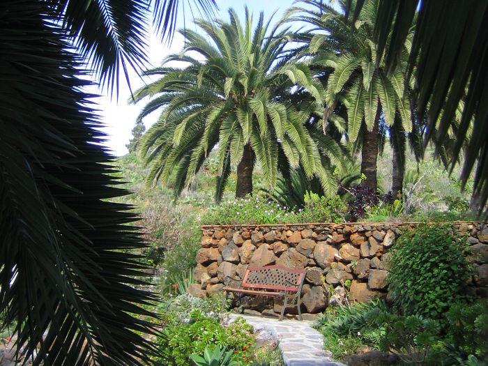 Casa Holger, Relaxen unter Palmen