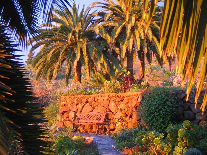 Casa Holger - Relaxen unter Palmen